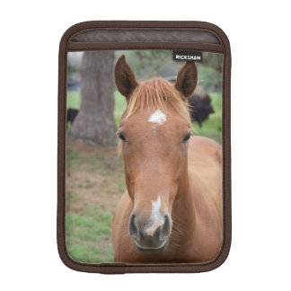 Alert Brown Horse Close-up Sleeve For iPad Mini