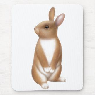 Alert Brown Rabbit Mousepad