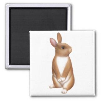 Alert Bunny Rabbit Magnet