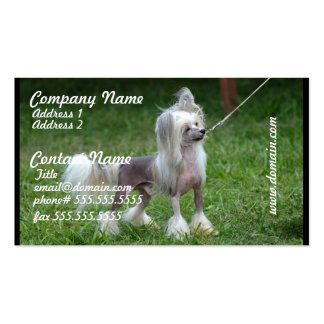 Alert Chinese Crested Dog Double-Sided Standard Business Cards (Pack Of 100)