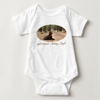 Alert Chocolate Lab On A Forest Trail Tee Shirt