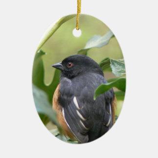Alert Eastern Towhee Ornaments