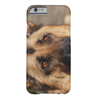 Alert German Shepherd Barely There iPhone 6 Case