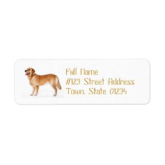 Alert Golden Retriever Mailing Label Return Address Label