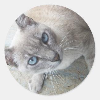 Alert Kitty Classic Round Sticker