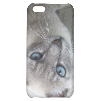 Alert Kitty iPhone 5C Covers