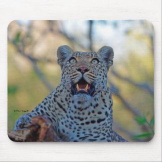 Alert Leopard Mousepad