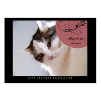 Alert Life Lessons From A Cat ACEO Art Cards Business Card