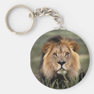 Alert Lion Basic Round Button Keychain