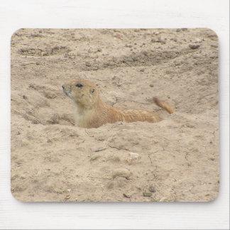 Alert Little Prairie Dog Mouse Pad