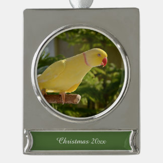Alert Lutino Indian Ringneck Silver Plated Banner Ornament