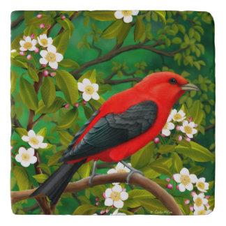 Alert Male Scarlet Tanager Stone Trivet