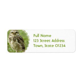 Alert Owl Address Labels