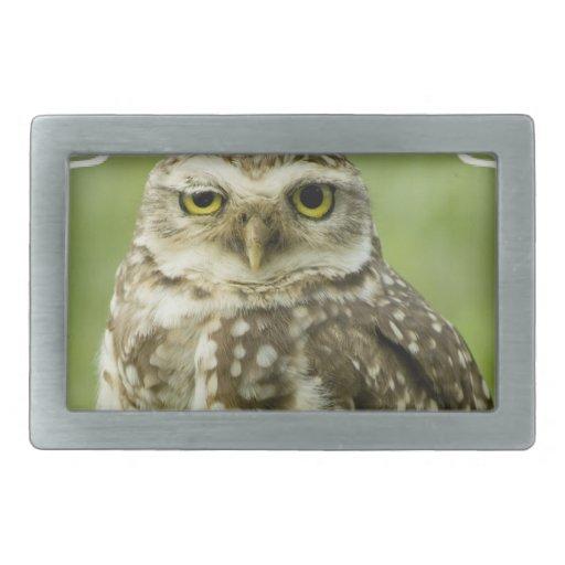 Alert Owl Buckle Rectangular Belt Buckles
