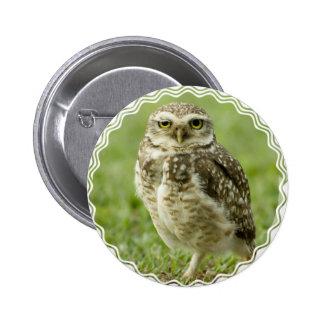 Alert Owl Button