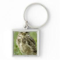Alert Owl Keychain