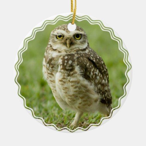 Alert Owl Ornament