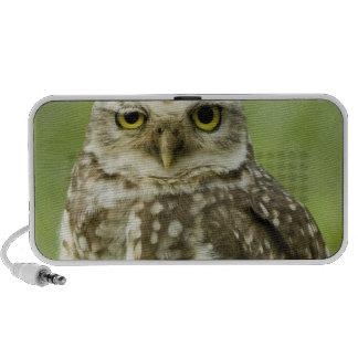 Alert Owl Speakers