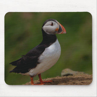 Alert Puffin Mouse Pad