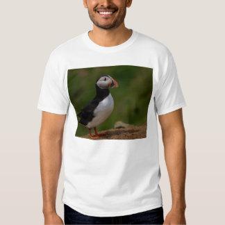 Alert Puffin Shirt