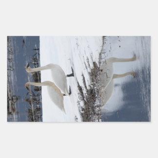 Alert Swans Rectangular Sticker