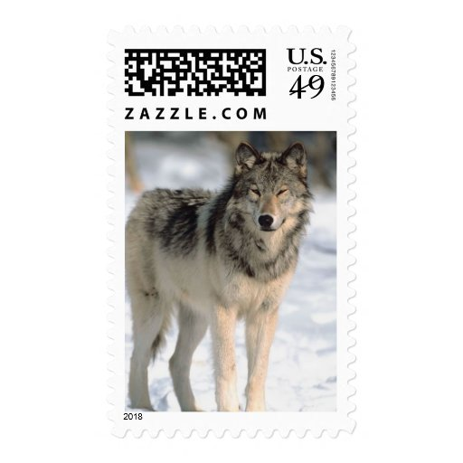 Alert Wolf Postage