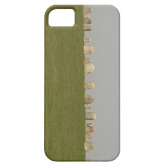 Ales Stenar Sweden iPhone 5 Covers