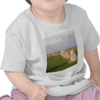 Ales Stenar ~ Sweden Tshirt