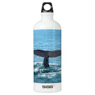 Aleta de la ballena