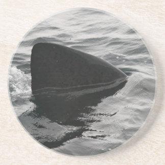 Aleta del tiburón posavasos diseño