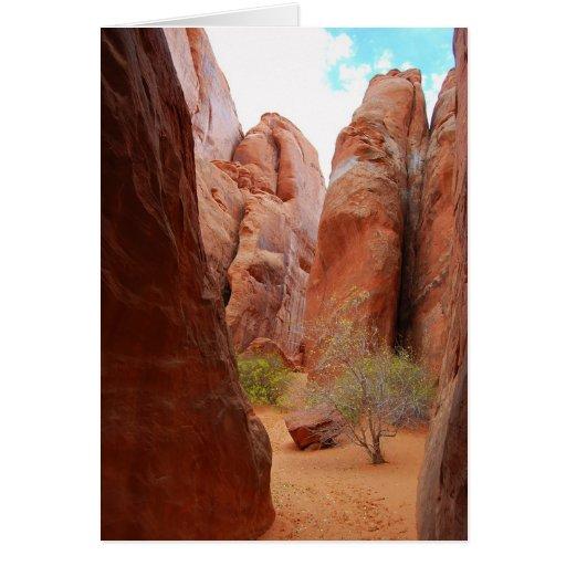 Aletas, arcos parque nacional, tarjeta de Utah