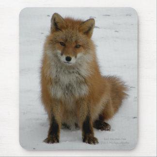 Aleutian Fox Mouse Pads