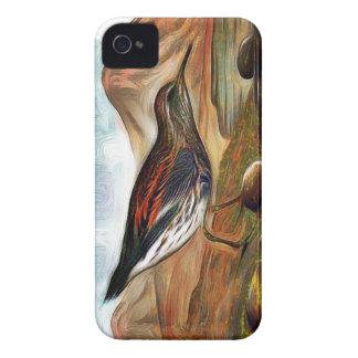 Aleutian to sandpiper iPhone 4 case
