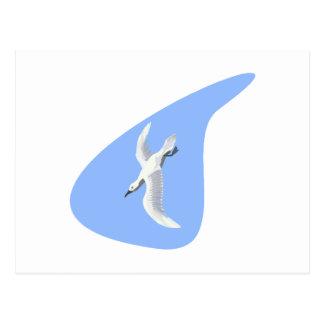 Alex Albatross Post Cards