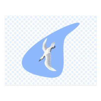 Alex Albatross Postcard