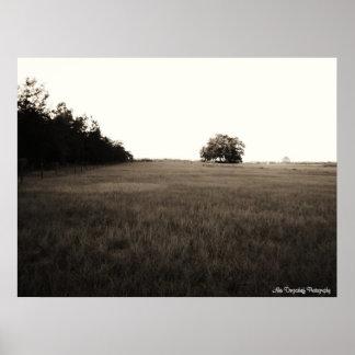 Alex Dergacheff Photography, beautiful open field. Poster