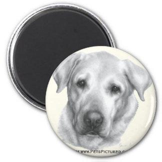 Alex, Yellow Labrador Retriever 2 Inch Round Magnet