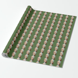 Alexander Hamilton wrapping paper