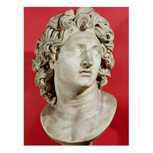 Alexander the Great  King of Macedonia Postcard