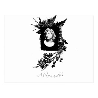 alexander the great postcard
