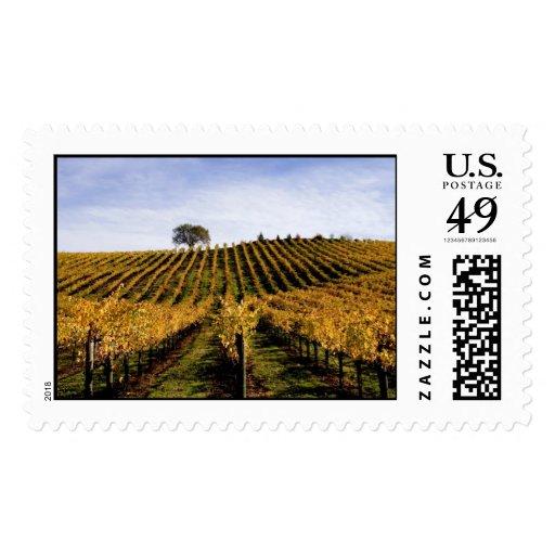 Alexander Valley Hillside Postage Stamps