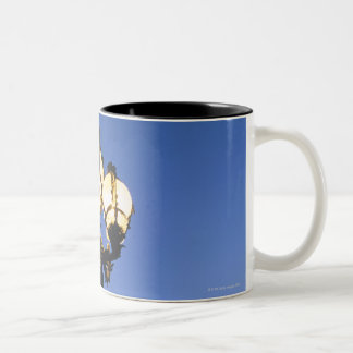 Alexandre III Bridge in Paris Two-Tone Coffee Mug