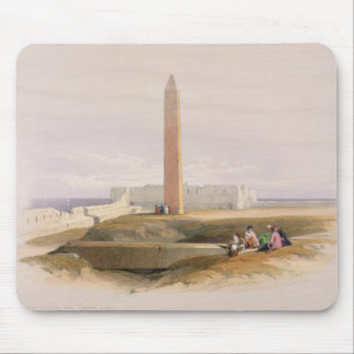 Alexandria, commonly called Cleopatra's Mouse Pad