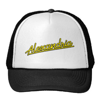 Alexandria in yellow trucker hat