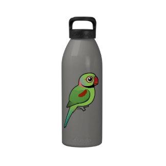 Alexandrine Parakeet Drinking Bottles