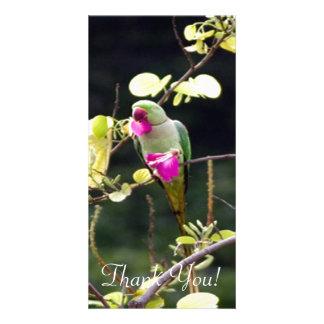 Alexandrine Parakeet With Pretty Purple Flowers Card
