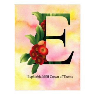 Alfabeto de las flores con el fondo de la acuarela postal