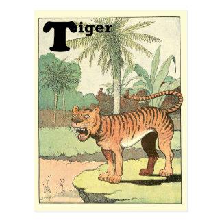Alfabeto del tigre tarjetas postales