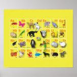 Alfabetos animales muy muy lindos poster
