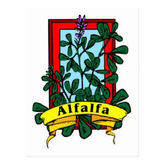 Alfalfa Postcard
